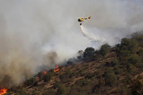 Conaf entrega reporte de incendio que afecta a cercanías del Santuario Lo Vásquez