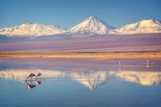 El desierto más árido del mundo era muy diferente hace millones de años