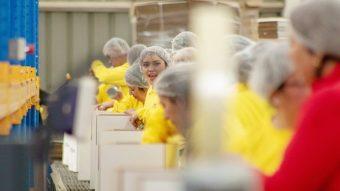 Por segundo año consecutivo: Mujeres lideran denuncias en la Dirección del Trabajo
