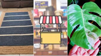 Kioskito Romántica: Alfombras, aromas y plantas tropicales en la vitrina de mitad de semana