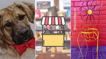Kioskito Romántica: Acuarelas de perritos, accesorios y trabajos en fierro en la vitrina de martes