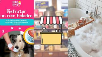 Kioskito Romántica: Relajantes baños de tina, helados para perritos y más en la vitrina de jueves
